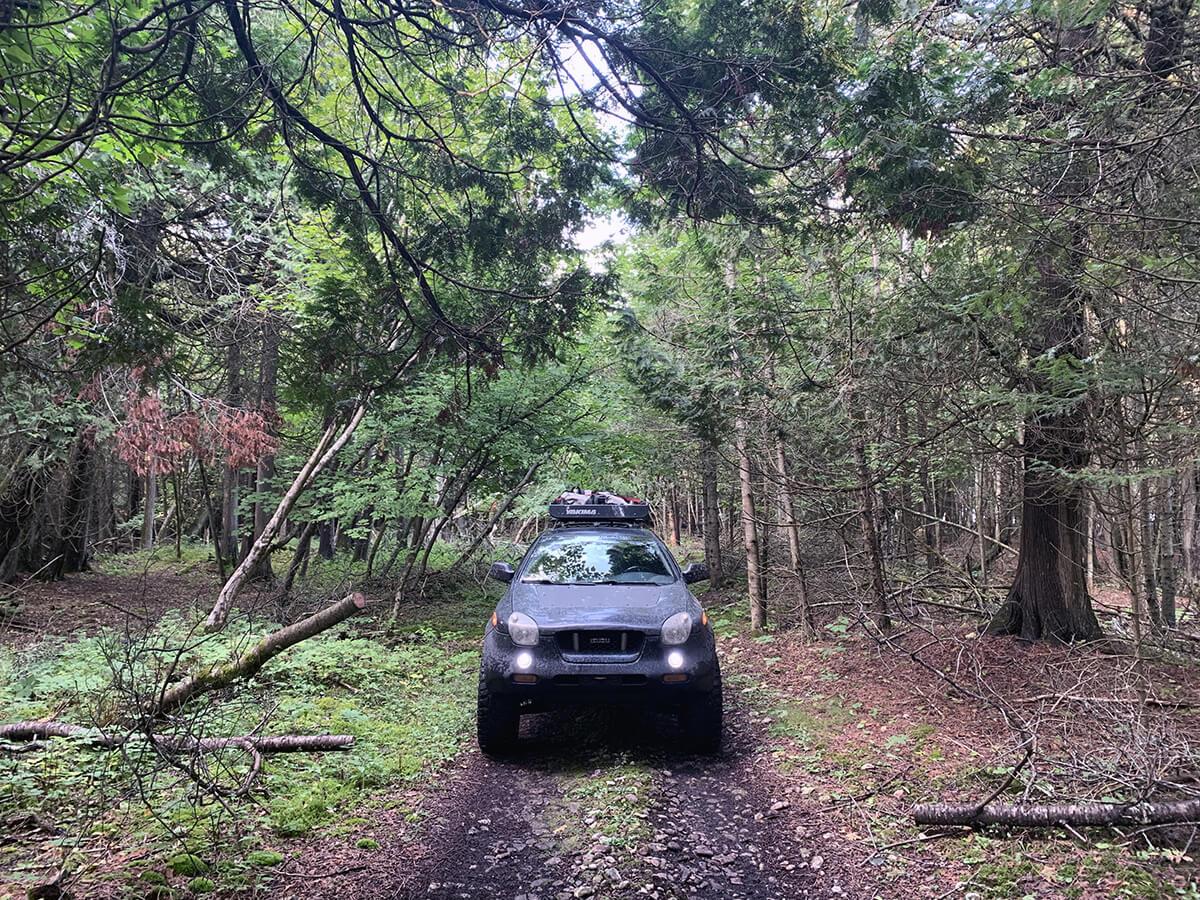 Isuzu Vehicross in the forest