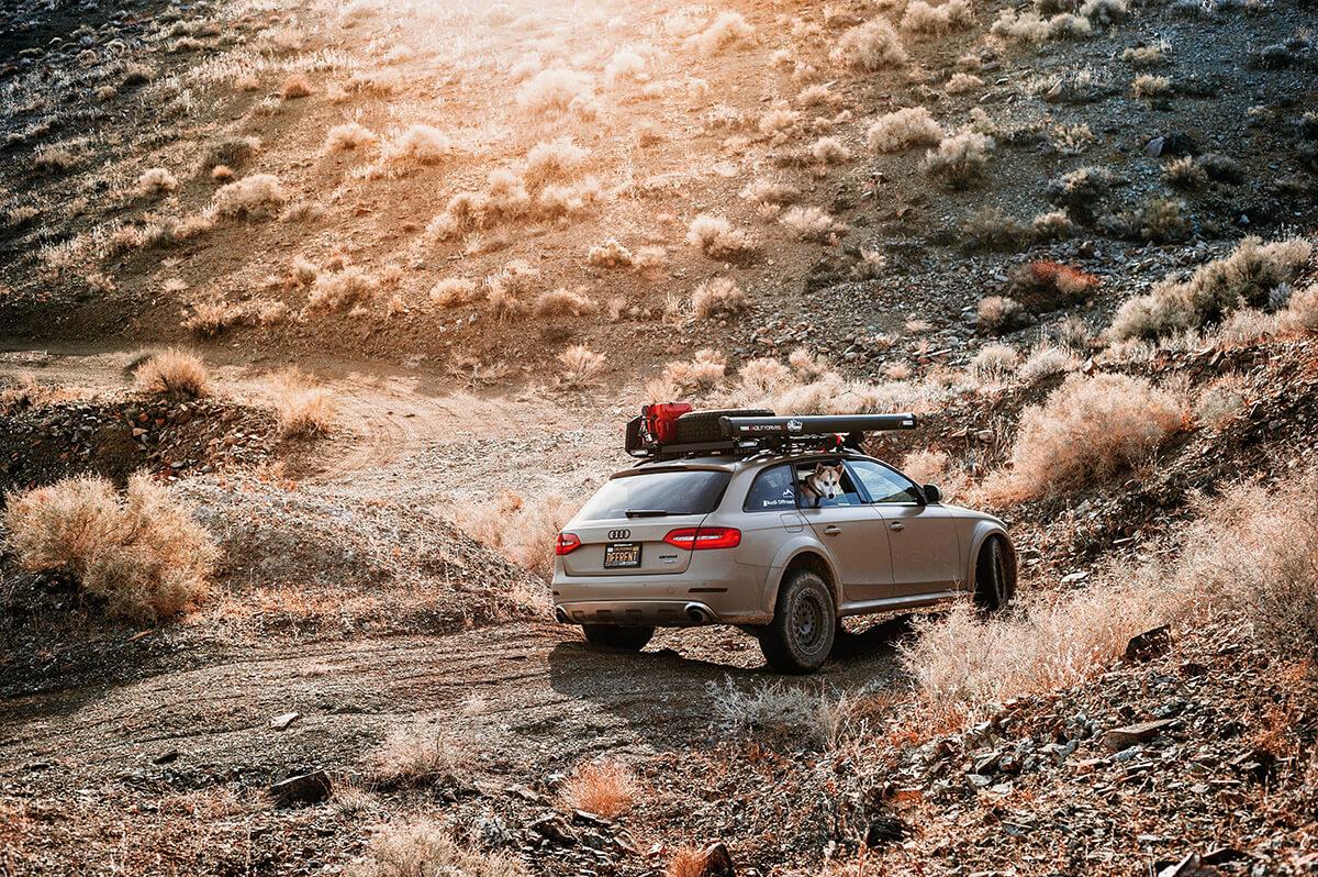 Matte tan Lifted Audi Allroad