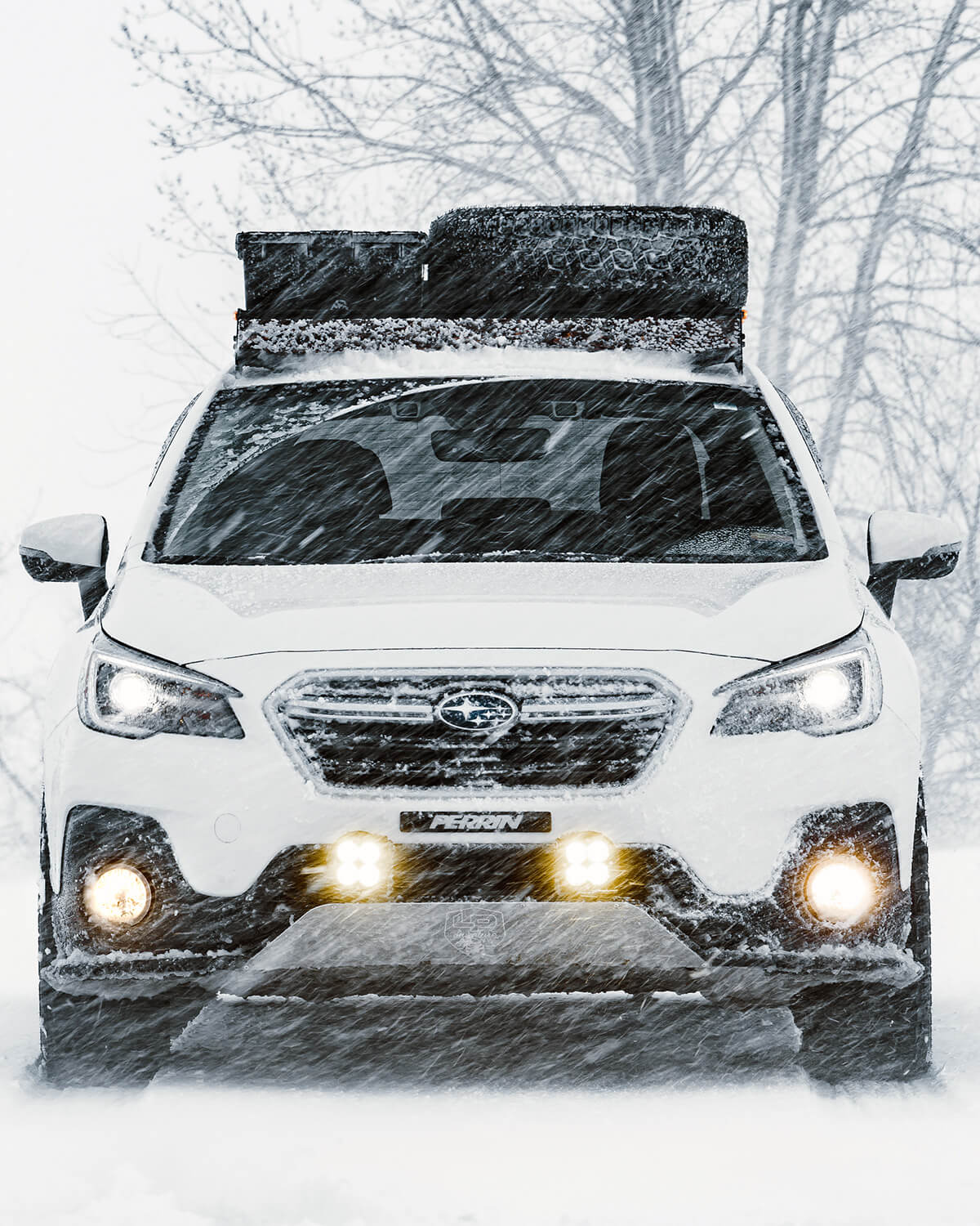 IRIS Weathertight 41 quart roof box (for firewood, hiking/running shoes, or cold food storage during winter)
