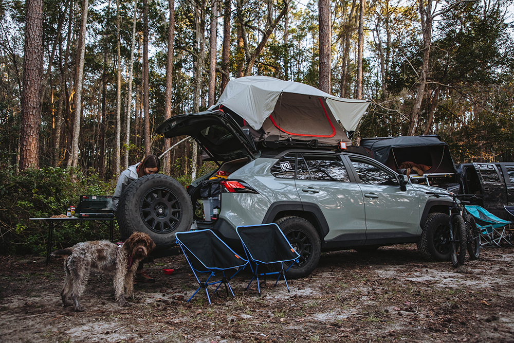 Camping in Toyota Rav4 overland project